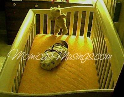 Baby V Crib 1